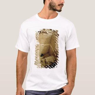 Ruine de palais t-shirt