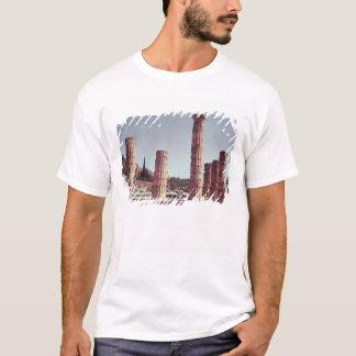 Ruines du temple d'Apollo T-shirt