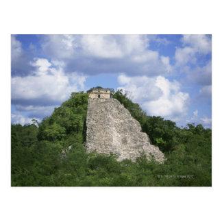 Ruines maya de Coba, péninsule du Yucatan, Mexique Carte Postale