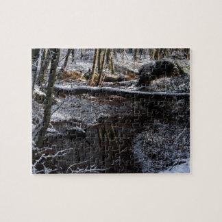 Ruisseau de forêt d hiver puzzle avec photo
