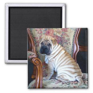Sa chaise préférée magnet carré