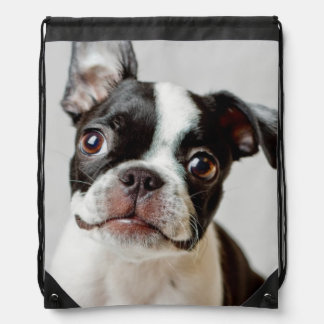 Sac Avec Cordons Boston Terrier
