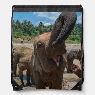 Sac Avec Cordons Eau potable d'éléphant, Sri Lanka