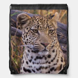 Sac Avec Cordons Séance de léopard, Botswana, Afrique