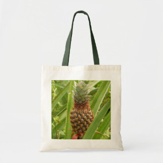 Sac Fruit tropical d'ananas sauvage en nature