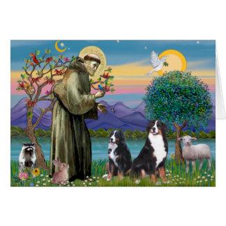 Saint Francis - deux chiens de montagne de Bernese Cartes