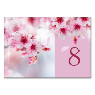 anniversaire rose fleurs cerisier cartes invitations photocartes et faire part anniversaire. Black Bedroom Furniture Sets. Home Design Ideas