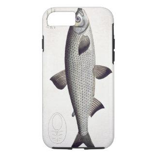 (Salmo Maraena) plat saumoné XXVII de 'Ichthyolo Coque iPhone 7