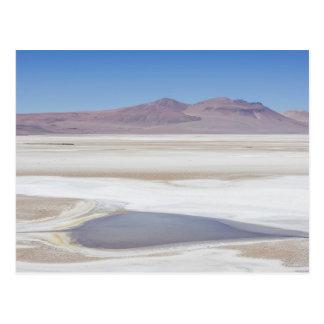 Salt Lake sur la route vers l'Argentine Carte Postale