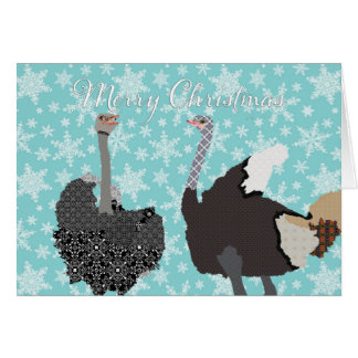 Salutation sainte de Noël d'autruche d'O Carte De Vœux