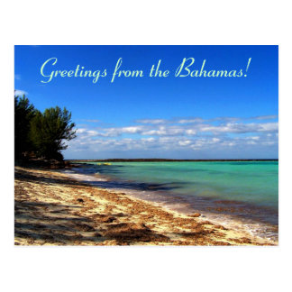 Salutations de Bahamas ! Carte Postale