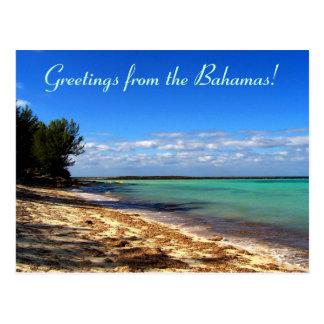 Salutations de Bahamas ! Cartes Postales