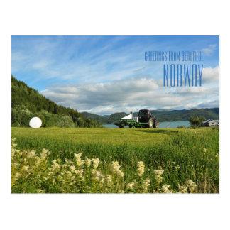 Salutations de carte photo d'été de la Norvège Cartes Postales