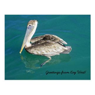 Salutations de carte postale de Key West