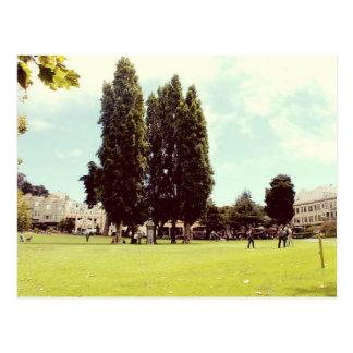 Salutations vertes de parc d'arbres de la cartes postales