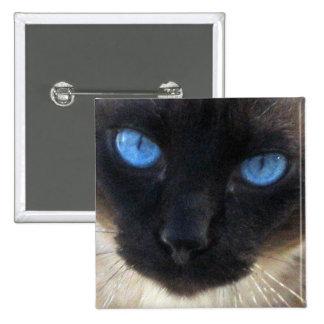 Sam le chat siamois badge