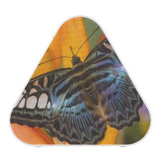 Sammamish, papillon tropical 24 de Washington Haut-parleur Bluetooth