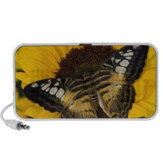 Sammamish, papillon tropical 27 de Washington Haut-parleur Mobile