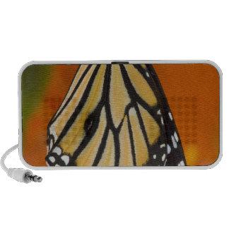 Sammamish, Washington. Papillons tropicaux 2 Haut-parleurs Notebook