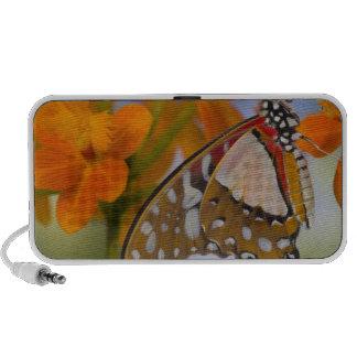 Sammamish, Washington. Papillons tropicaux 47 Haut-parleurs iPhone