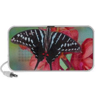Sammamish, Washington. Papillons tropicaux 48 Haut-parleur Ordinateur Portable