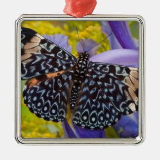 Sammamish, Washington. Papillons tropicaux 55 Ornement Carré Argenté