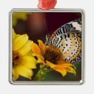 Sammamish, Washington. Papillons tropicaux 66 Ornement Carré Argenté