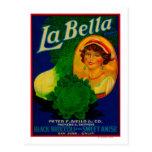 San Jose, étiquette végétal de CaliforniaLa Bella Cartes Postales