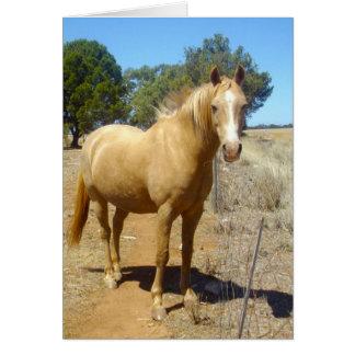 Sandy_Brown_Horse, _Greeting_Card Carte De Vœux