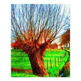 saule dans le paysage flamand traditionnel prospectus 11,4 cm x 14,2 cm