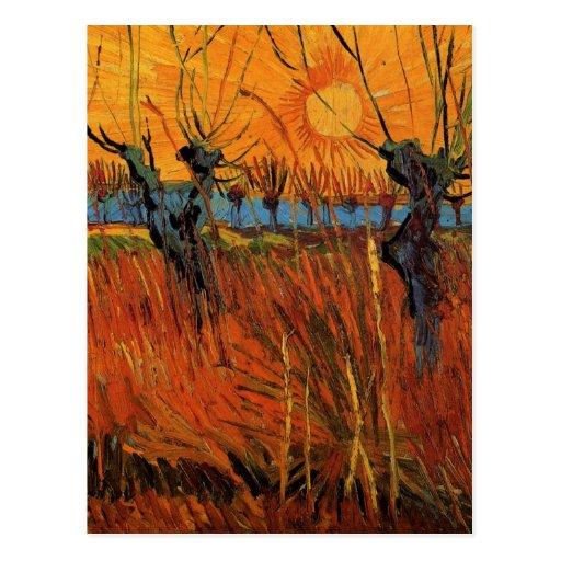 Saules de Van Gogh au coucher du soleil, impressio Carte Postale