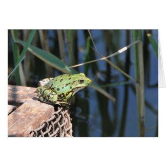 Saut - carte de voeux de grenouille verte