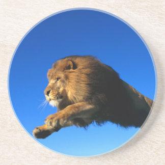 Saut de lion et ciel bleu dessous de verres