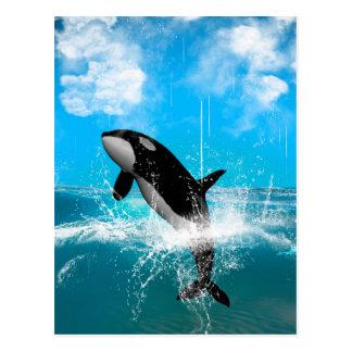 Sauter d'orque carte postale