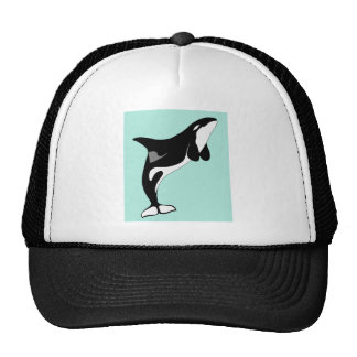 Sauter d'orque casquette trucker