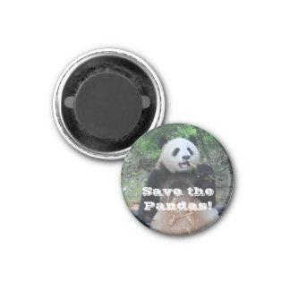 Sauvez l'aimant de pandas géants magnet carré 2,50 cm