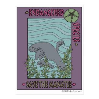 Sauvez le lamantin carte postale