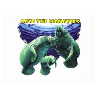 Sauvez les lamantins carte postale