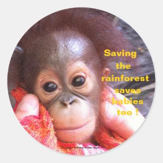 Sauvez les orangs-outans et la forêt tropicale adhésifs ronds