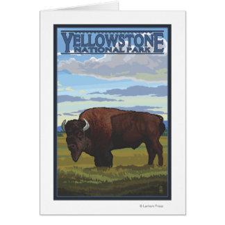 Scène de bison - parc national de Yellowstone Carte De Vœux