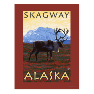 Scène de caribou - Skagway, Alaska Carte Postale