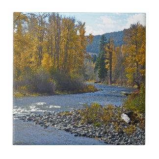Scène de forêt et de rivière d'automne petit carreau carré