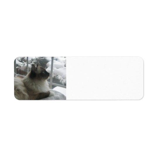 Scène de l'Himalaya de Noël de neige de Kitty de Étiquette D'adresse Retour