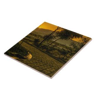 Scène tropicale de coucher du soleil de paysage grand carreau carré