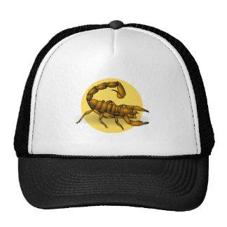 Scorpion Casquette