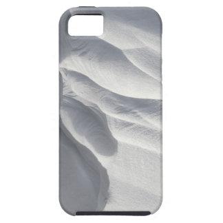 Sculpture en dérive de neige d'hiver coque Case-Mate iPhone 5