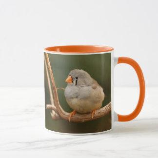 Se reposer assez : Pinson de zèbre Mug