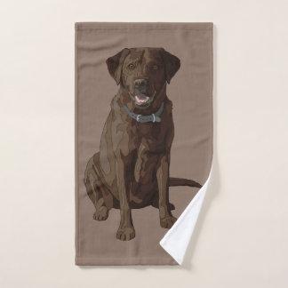 Séance de chien de labrador retriever de chocolat