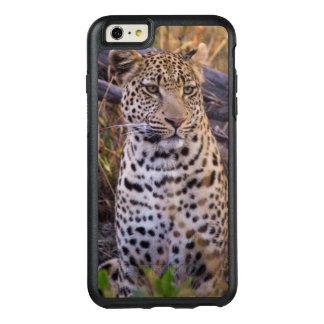 Séance de léopard, Botswana, Afrique Coque OtterBox iPhone 6 Et 6s Plus