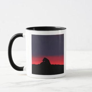 Séance de lionne (Panthera Lion), au coucher du Mug